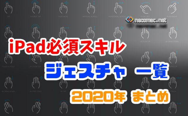 iPad ジェスチャー 2020年 まとめ
